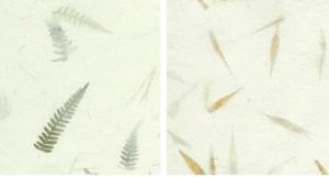 papeles fibras vegetales